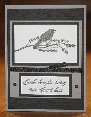 Gentle thoughts bird