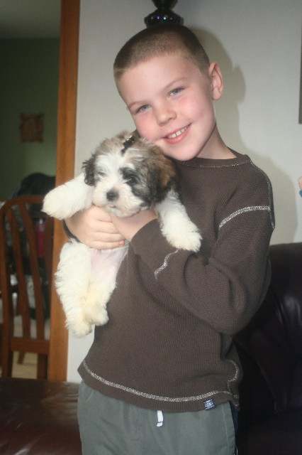 Shamrock and conor