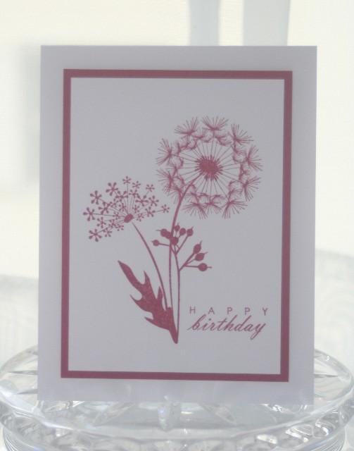 Birthday dandelions