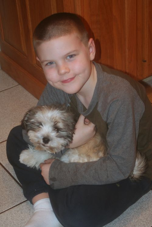 Shamrock and conor 1