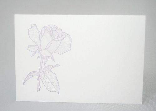 Rose purple A1