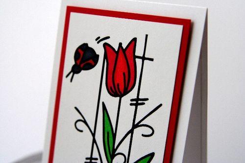 A1 tulip side close