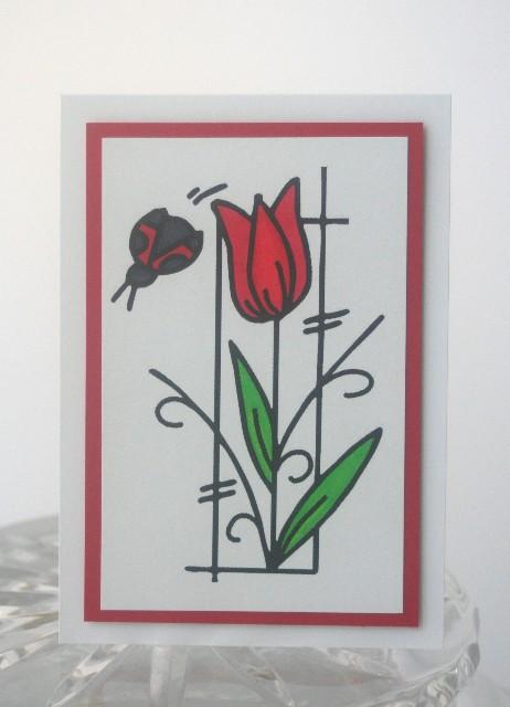 A1 tulip