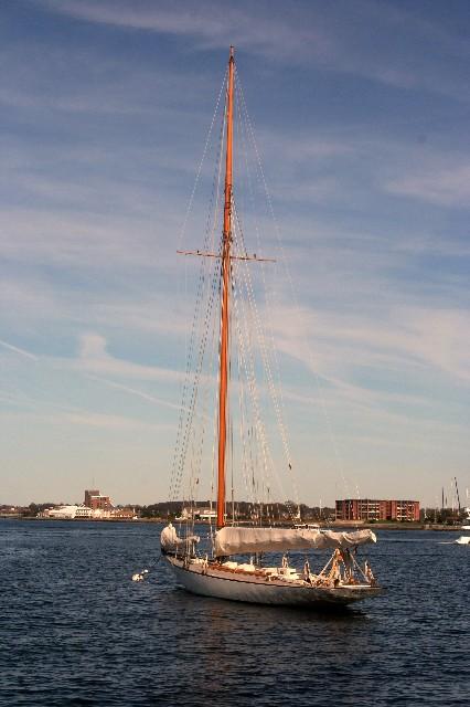 Newport 3