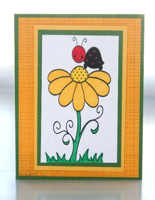 Ladybug flower yellow