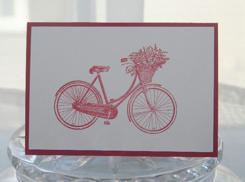 A1 bicycle rose red