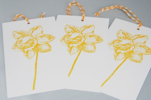 Daffodil tag set close