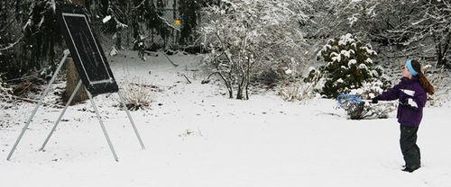 March snow 5