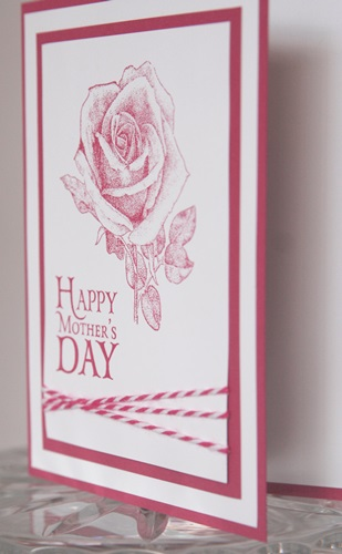 Mothers day rose side