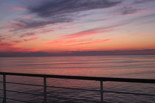 Cruise 8