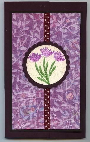 Jr_legal_purple_flowers