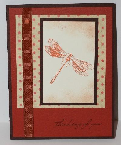Thinking_dragonfly