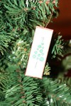 Slide_ornament_2_1